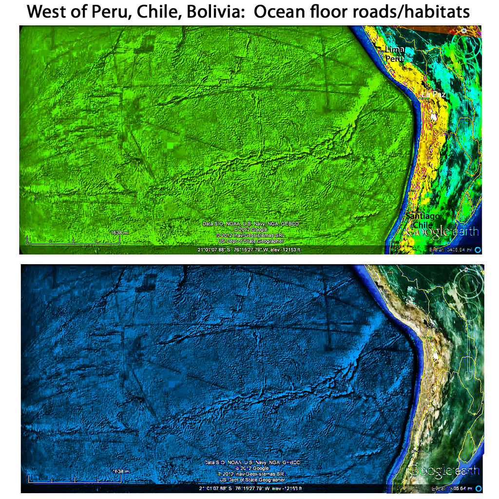 West of Chile, Peru, Bolivia: Ocean floor habitats, roads