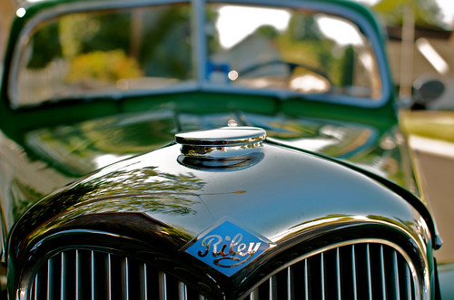 riley loveit 1950riley ringexcellence dblringexcellence tplringexcellence eltringexcellence