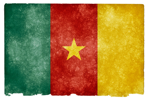 Cameroon Grunge Flag | by Free Grunge Textures - www.freestock.ca
