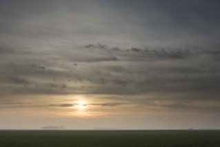 Early Morning Fens