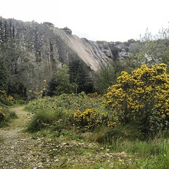lovely Dalkey Quarry