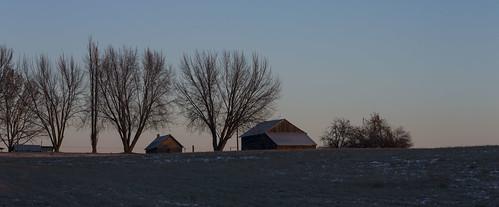 trees sunrise farm washingtonstate frozenfield leicas006 120mmapomacrosummarits