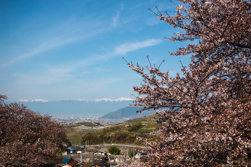 20150412-甲州高尾山-0011.jpg