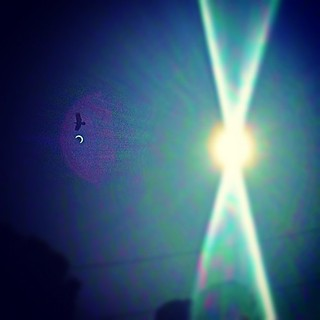 #solareclipse reflection and bird. have no idea how I managed this. #sf | by sarahwulfeck