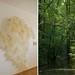 L'Uomo che Piantava gli Alberi Cotton paper, installations variable - Photo true giclèe fine art print