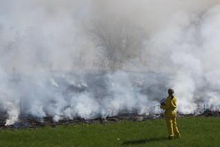 Assessing the status of the burn so far