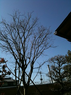 2012-02-29 10-26-57 | by Today's Photo 今日の写真