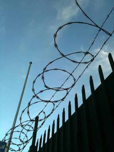 barbed wire   by marianne muegenburg cothern