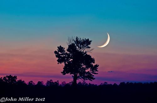 ohio sky tree fall colors leaves night season landscape dusk troy dayton