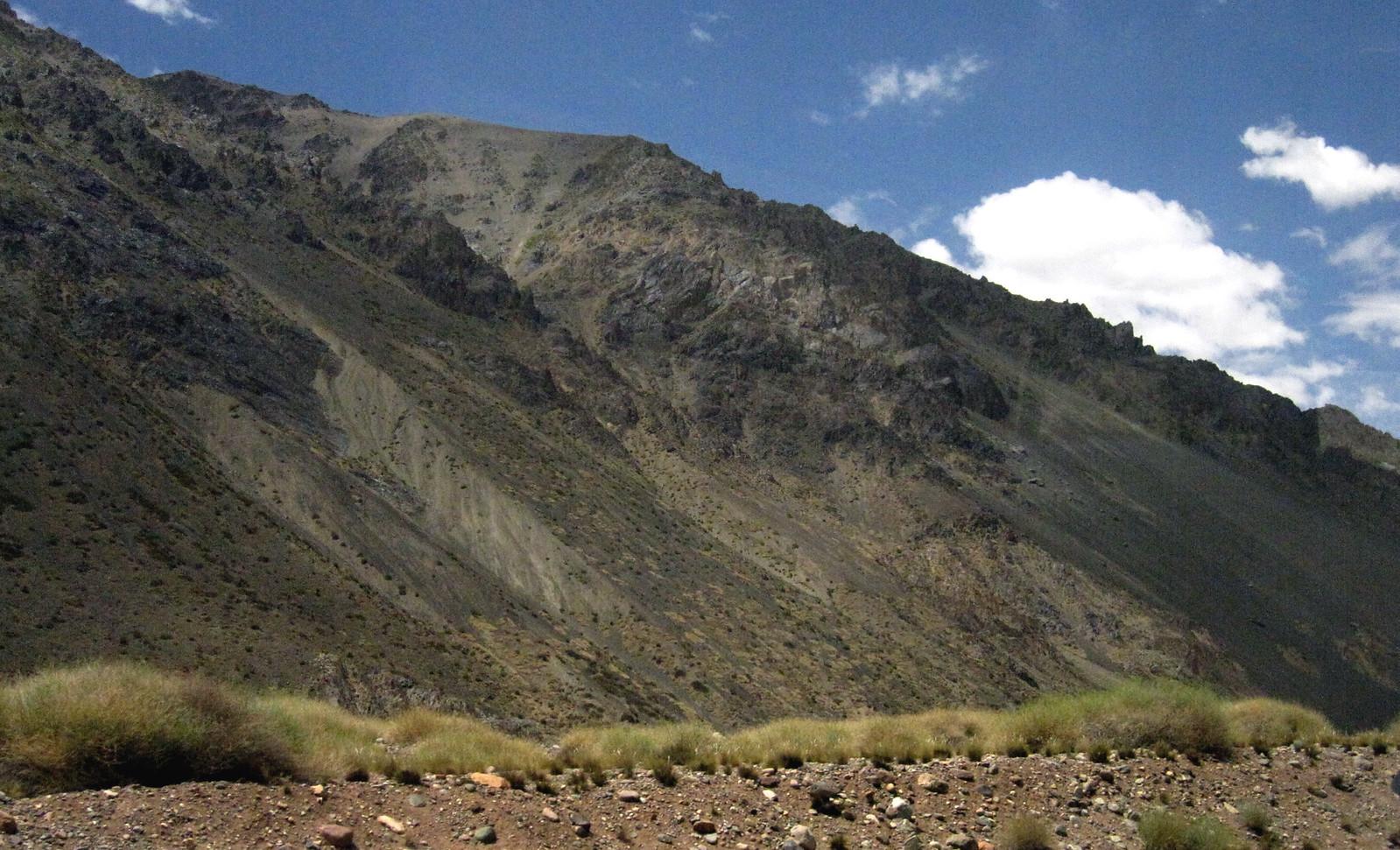 Mendoza 343
