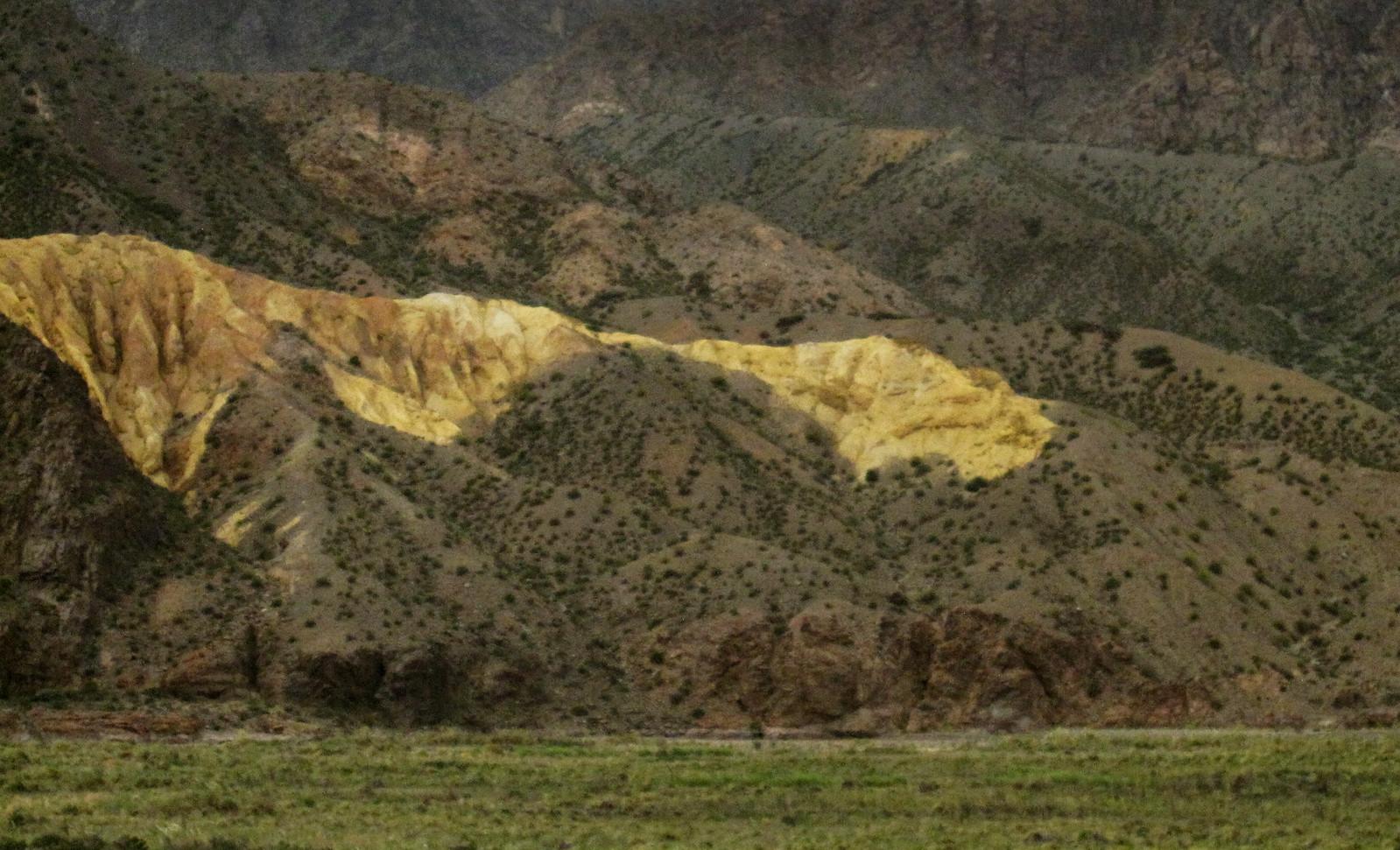 Mendoza 446