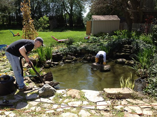 Pond clean up
