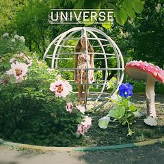 1/365 Universe by wonterth