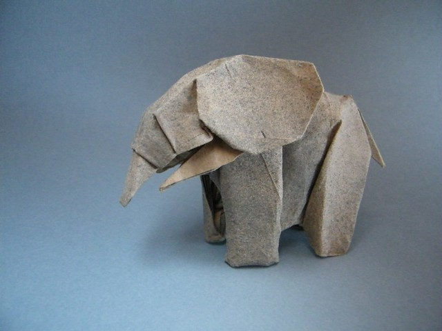 African Elephant - Marc Kirschenbaum