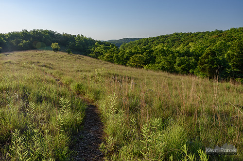 lakeoftheozarksstatepark osagebeach missouri rockytop trail june summer nikond750 green trees glade grass clearing early morning sunny sunlight path blue sky tamron2470mmf28 dolomite ozarks