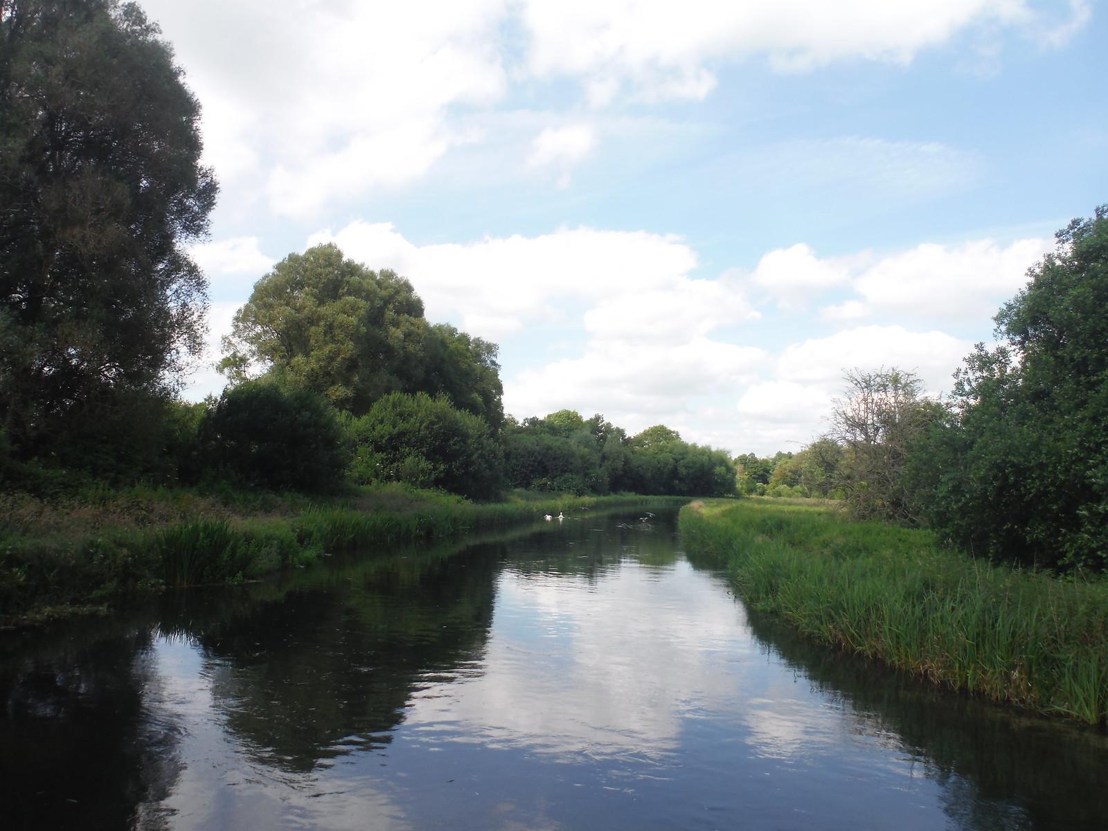 Park Stream, Test Meadows SWC Walk 265 - Dean to Mottisfont and Dunbridge