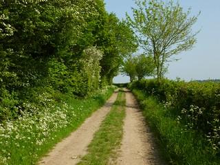 Mid afternoon Sandling to Wye walk