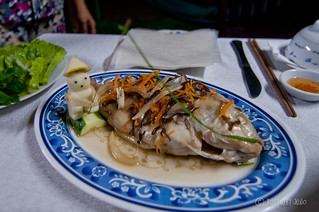 Steamed fish from Mekong Delta | by RunawayJuno