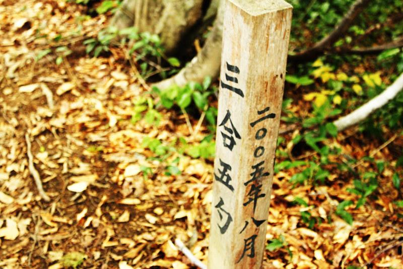 20120520_巻機山_0024