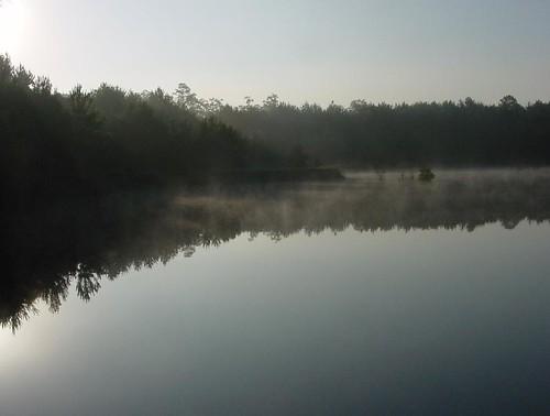 morning mist lake reflection robert nature fog landscape outdoors dawn early pond louisiana calm lakerichard