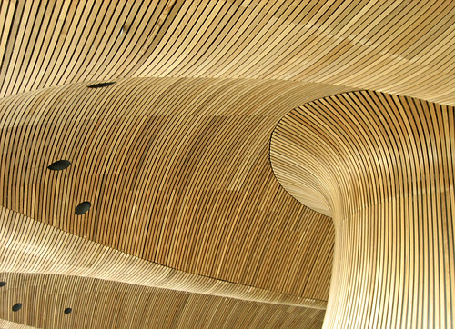 Welsh Assembly/Senedd roof | by arripay