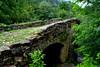 Pont romànic de Castellfollit de la Roca, la Garrotxa.
