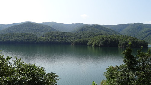 chfstew tennessee tncartercounty landscape lake