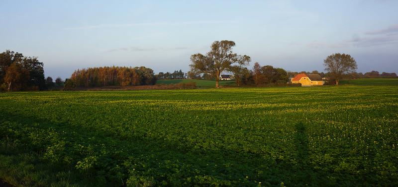 Kaedeby-Haver-oktoberlandskab