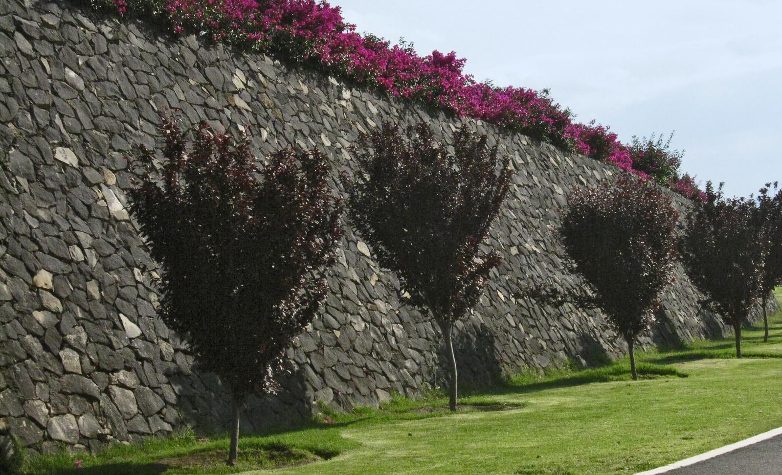Parque Bicentenario 127
