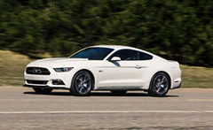 Ford-2015-Mustang-50th-Ed-24