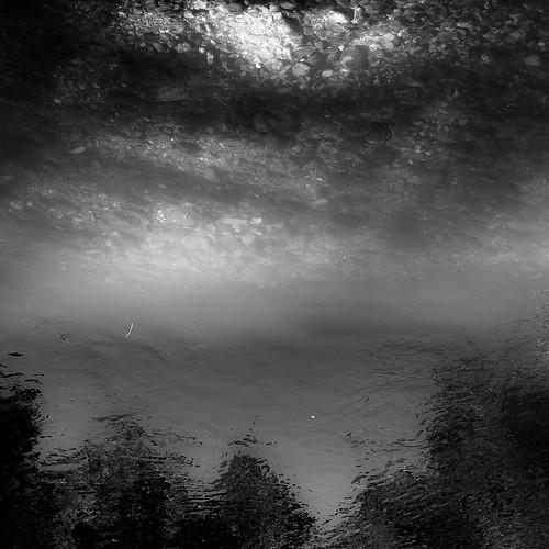 d5000 kokosingriver nikon abstract blackwhite blackandwhite bw forest landscape light monochrome natural noahbw reflection river rock rocks shadow sky square stone stones summer sunlight trees water woods treesinwater cloudsskiesandsuch
