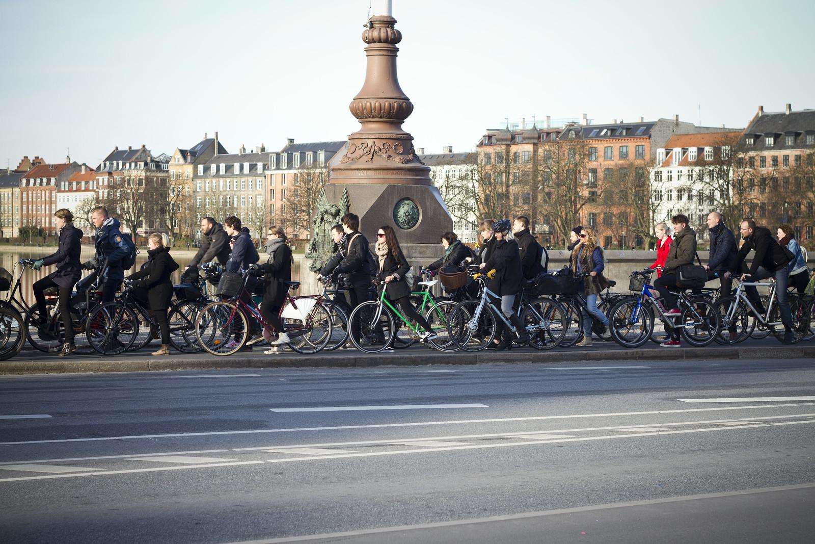 Bicycle Rush Hour Copenhagen - Summer