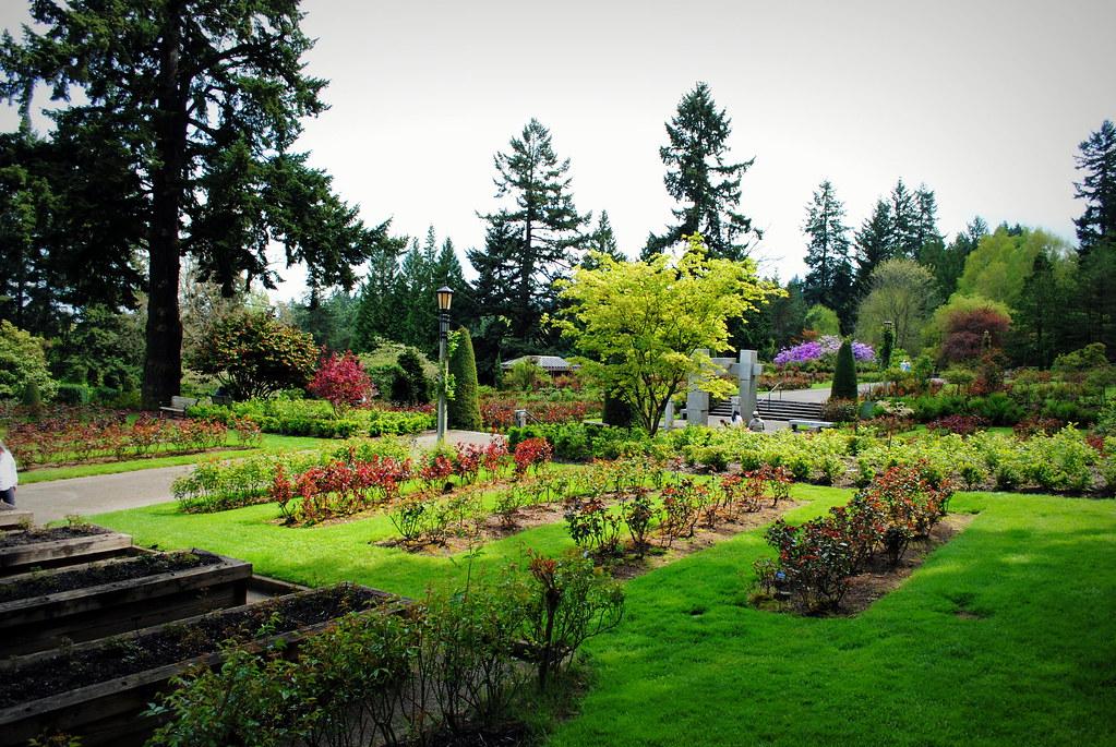 International Rose Test Garden Washington Park Portlan Flickr