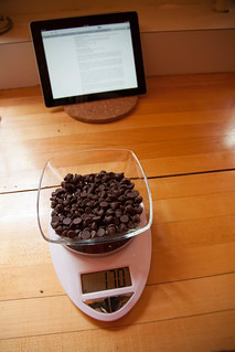 170 wonderful grams of semisweet chocolate chips | by m.wang