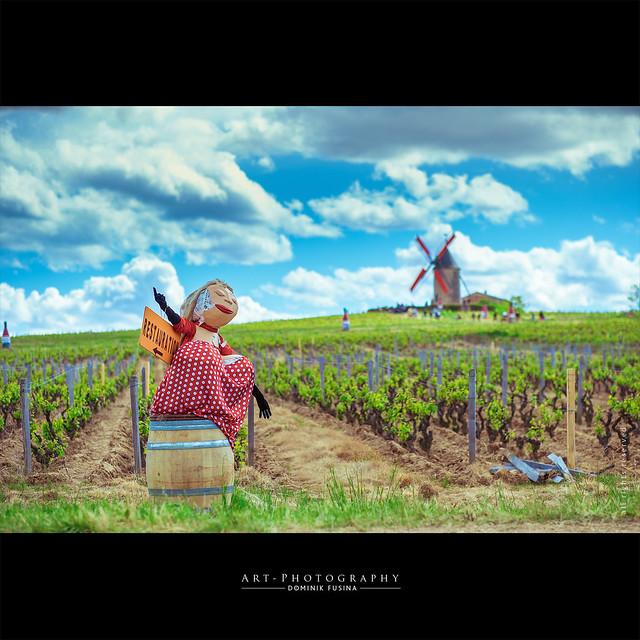La danseuse du moulin rouge | FUJI x-T1 + 56mm