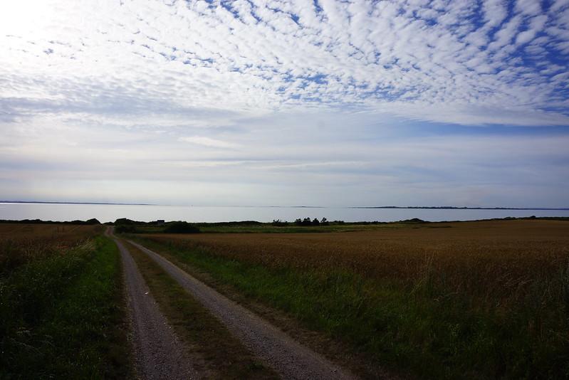 Kaedeby-Haver-2013-07-29 (8)