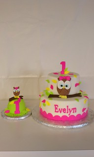 Remarkable Evelyns First Birthday Owl Themed Cake And Matching Smash Flickr Funny Birthday Cards Online Hendilapandamsfinfo
