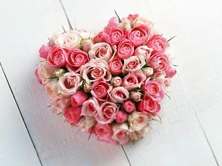 Love Flowers | by aneesprince