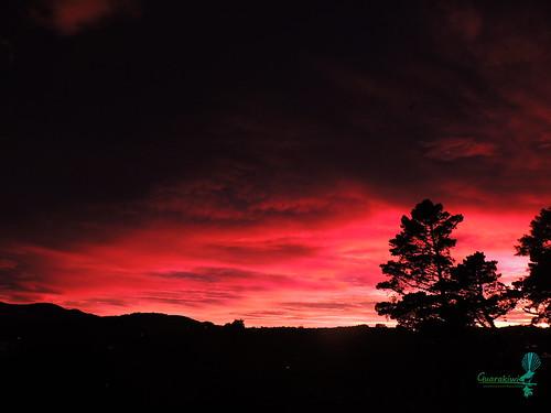 pink sunset newzealand clouds rosa cielo nubes otago dunedin rosado otagonz