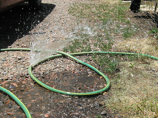 It took 38 years for the hose to spring a leak | by oddharmonic