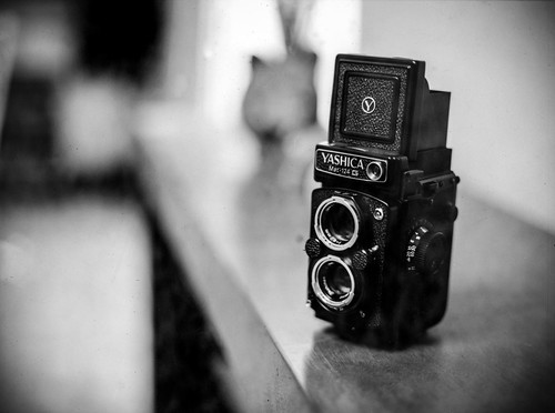Yashica Mat 124-G | by .RayPG.