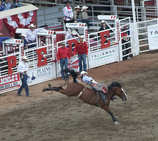 Calgary Stampede | by Ashley Bayles