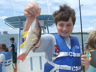 Tommy catches a BIG lane snapper.