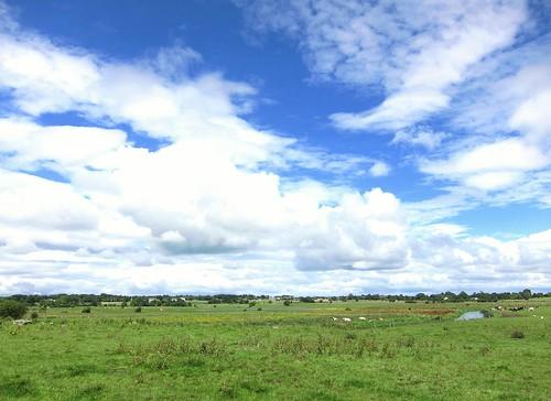 blue ireland sky green galway clouds europe cows eire pastureland