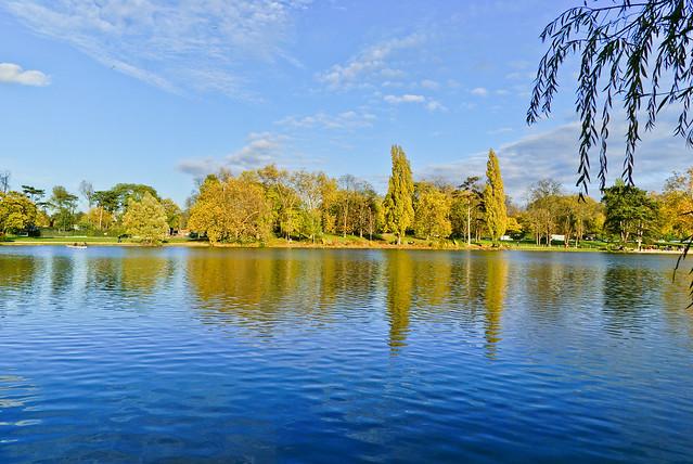 Bois de Vincennes - Contrast