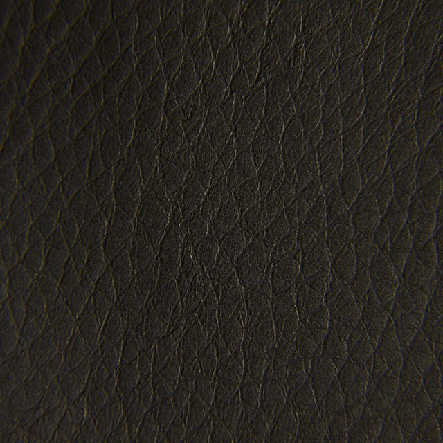 Texture Series: Leather