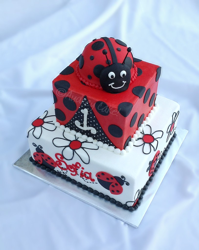 Ladybug 1st Birthday Cake | What little 1 year old wouldn't … | Flickr