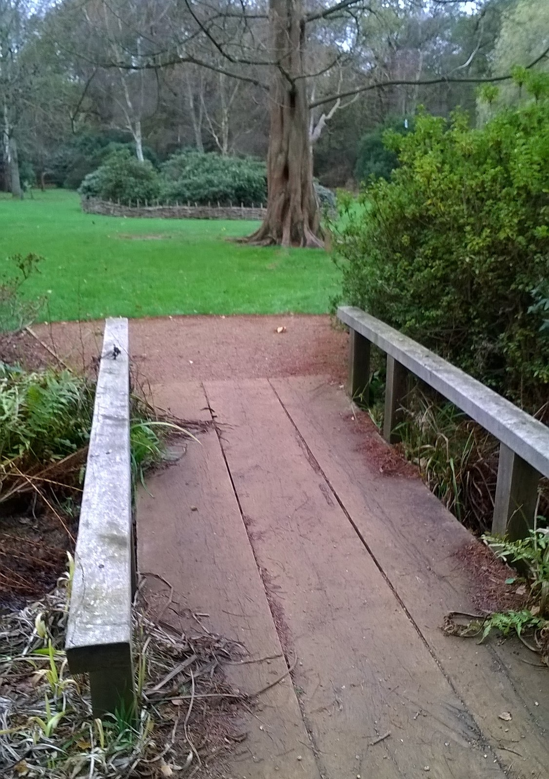 Bridge Isabella Plantation Richmond Park