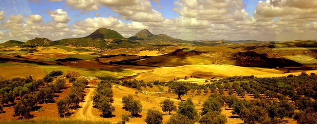Landscape near Ronda, view from train