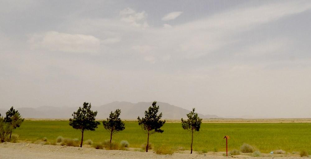 yazd-shiraz-L1020985
